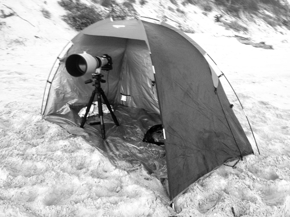 My sun shelter which was perfect to protect my camera setup from the wind.