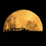 moonSilhouettes_150